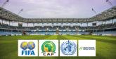 Covid-19 : La CAF et ses partenaires se réunissent pour la sécurité sanitaire en Afrique