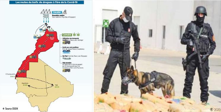 Circuits de drogues perturbés durant la Covid-19 : Le Maroc n'est pas un «safe heaven»  pour les narcotrafiquants