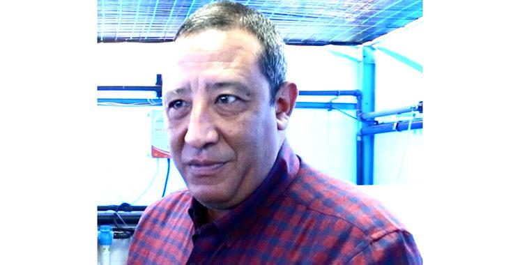 Fouad Elmajdi : «On cible une production de 100 mille tonnes de tilapia par an»