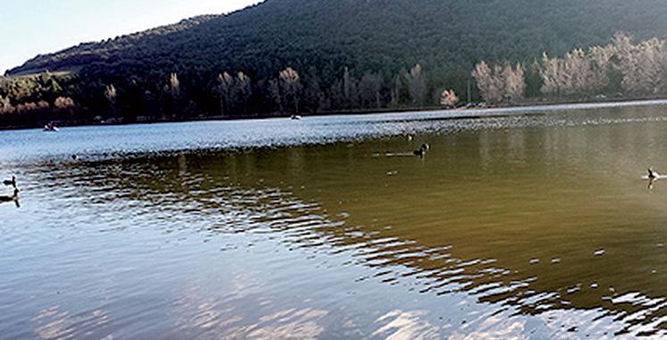 Parc national d'Ifrane : Lancement du  recensement hivernal des oiseaux d'eau