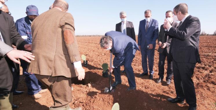 Une nouvelle dynamique insufflée à la région Marrakech-Safi