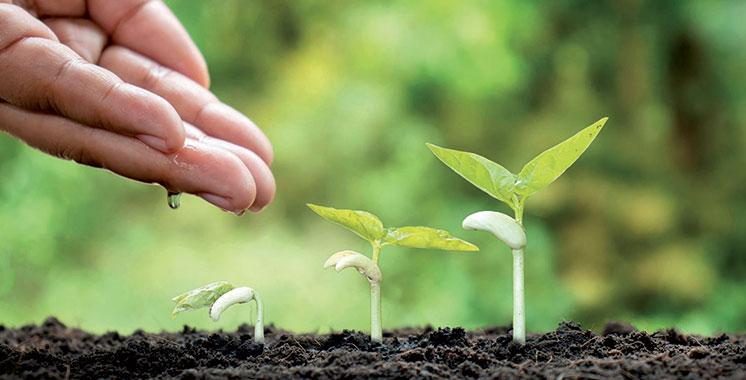 Agriculture : Un terrain fertile pour les TPME