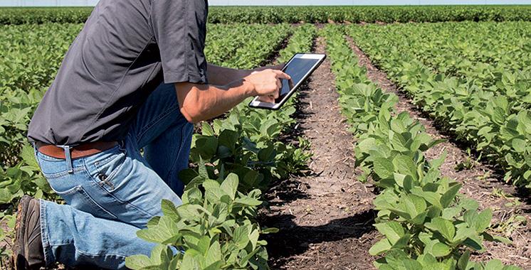 Dans le cadre de la stratégie «Al Jayl Al Akhdar» : L'ADA prépare une feuille de route pour  l'entrepreneuriat agricole