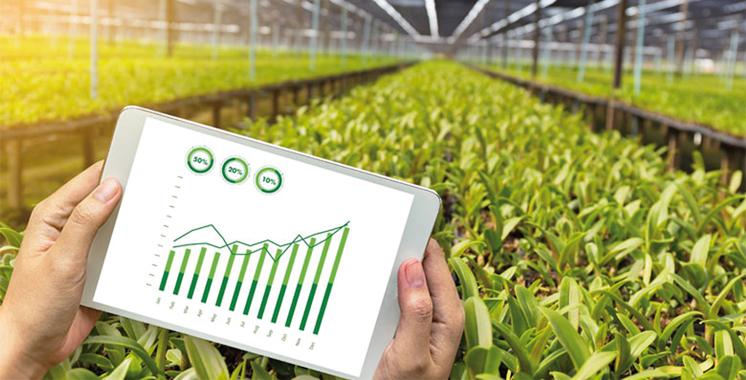Al Jayl Al Akhdar, un nouveau jalon  du développement agricole et rural