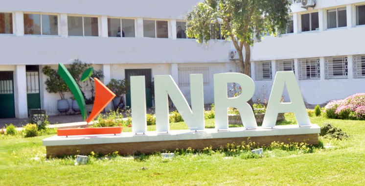 L'INRA communique sur ses nouvelles obtentions végétales au nett   des agriculteurs