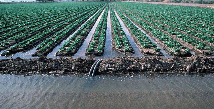 S'alignant sur la stratégie «Al Jayl Al Akhdar» : La BAD soutient l'inclusion des zones agricoles rurales