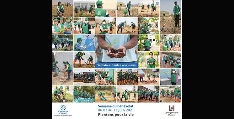 Journée mondiale de l'environnement : Plus de 4.000 arbres plantés  par LafargeHolcim