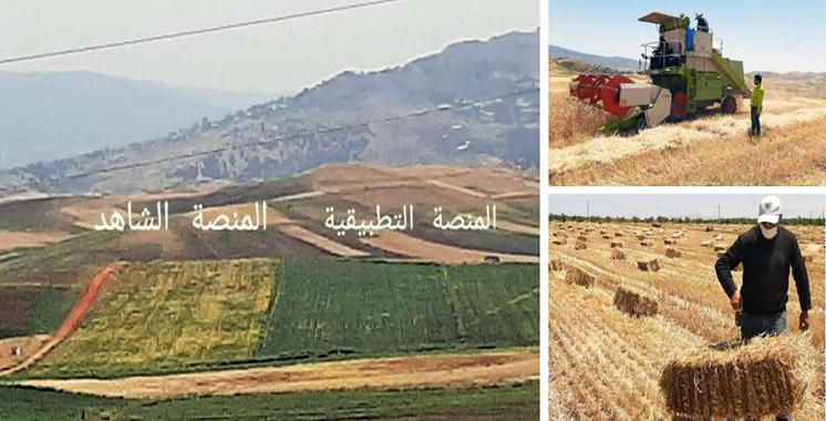 Al Moutmir: Un rendement de 44 qx/ha  pour les céréales