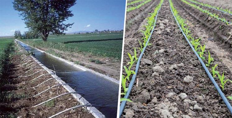 Un nouveau réseau d'irrigation pour  le périmètre agricole de Sidi Rahal
