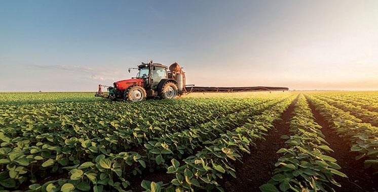 Croissance économique:  L'agriculture sauve la mise