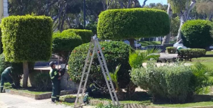Arrosage des espaces verts à Tanger et Gzenaya : 124 millions DH pour la réutilisation  des eaux usées traitées