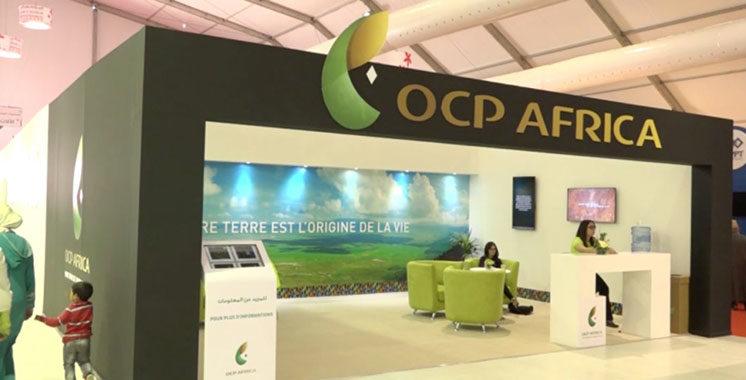 «South4Dev Series» signés Fondation OCP