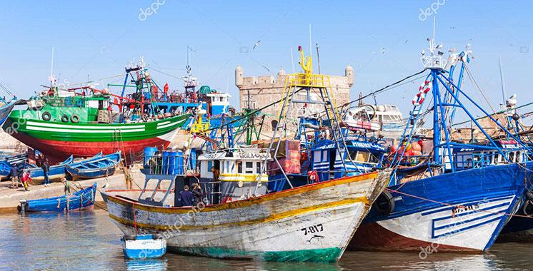 Pêche côtière et artisanale : 4,5 milliards de dirhams de débarquements à fin juin