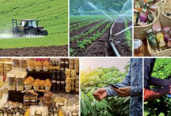 Agriculture: Le Maroc érigé en bon exemple par la BAD