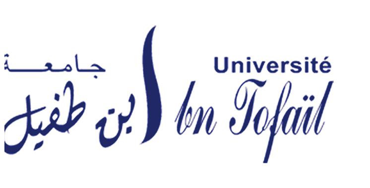 Classement THE : L'UIT de Kénitra dans le top mondial en Sciences physiques