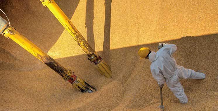 Importation des céréales et légumineuses : L'ADII et l'ONICL dématérialisent la procédure