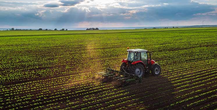 Agriculture : L'expérience marocaine partagée à Expo 2020 Dubai