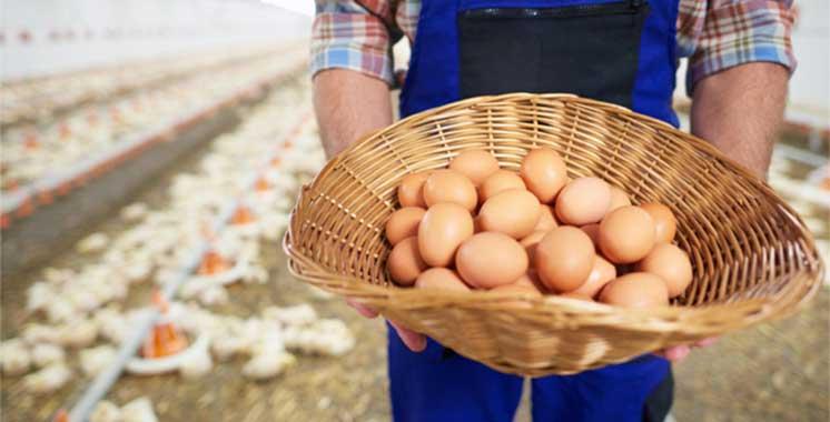 Plus de 6 milliards d'oe ufs produits au Maroc chaque année